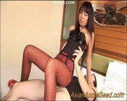 AsianAppleSeed – Freelanceho