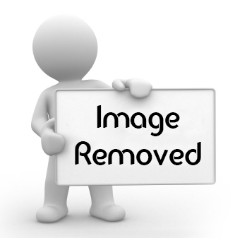 converting img tag in the page url cherish 036   free
