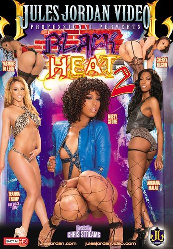 Black Heat 2 XXX DVDRiP x264-PORNOLATiON