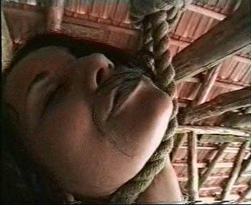 Hanging video 5