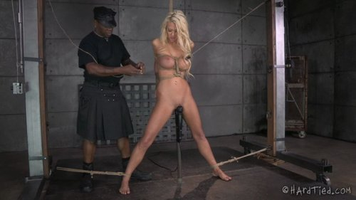 Download Hard Tied   Courtney Taylor Free